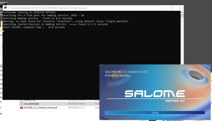 Salome_Meca 2019 opening on Windows  10