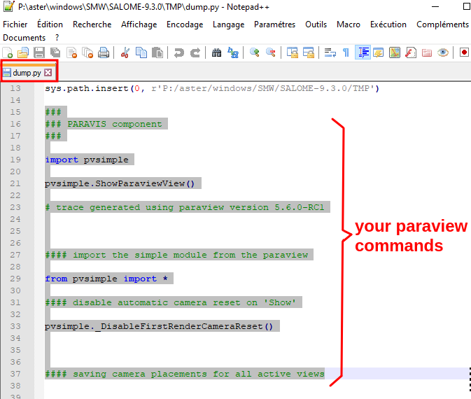 How to use Salome-Meca paraview python commands